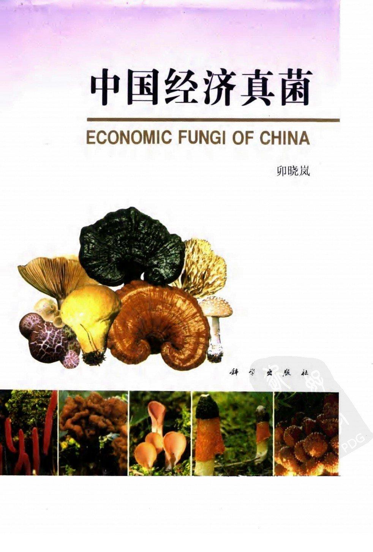 中国经济真菌 ECONOMIC FUNGI OF CHINA