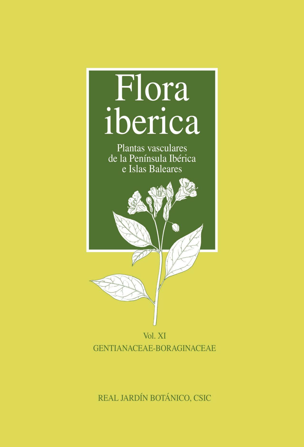 Flora iberica Plantas vasculares de la Península Ibérica e Islas Baleares Vol.Ⅺ GENTIANACEAE-BORAGINACEAE