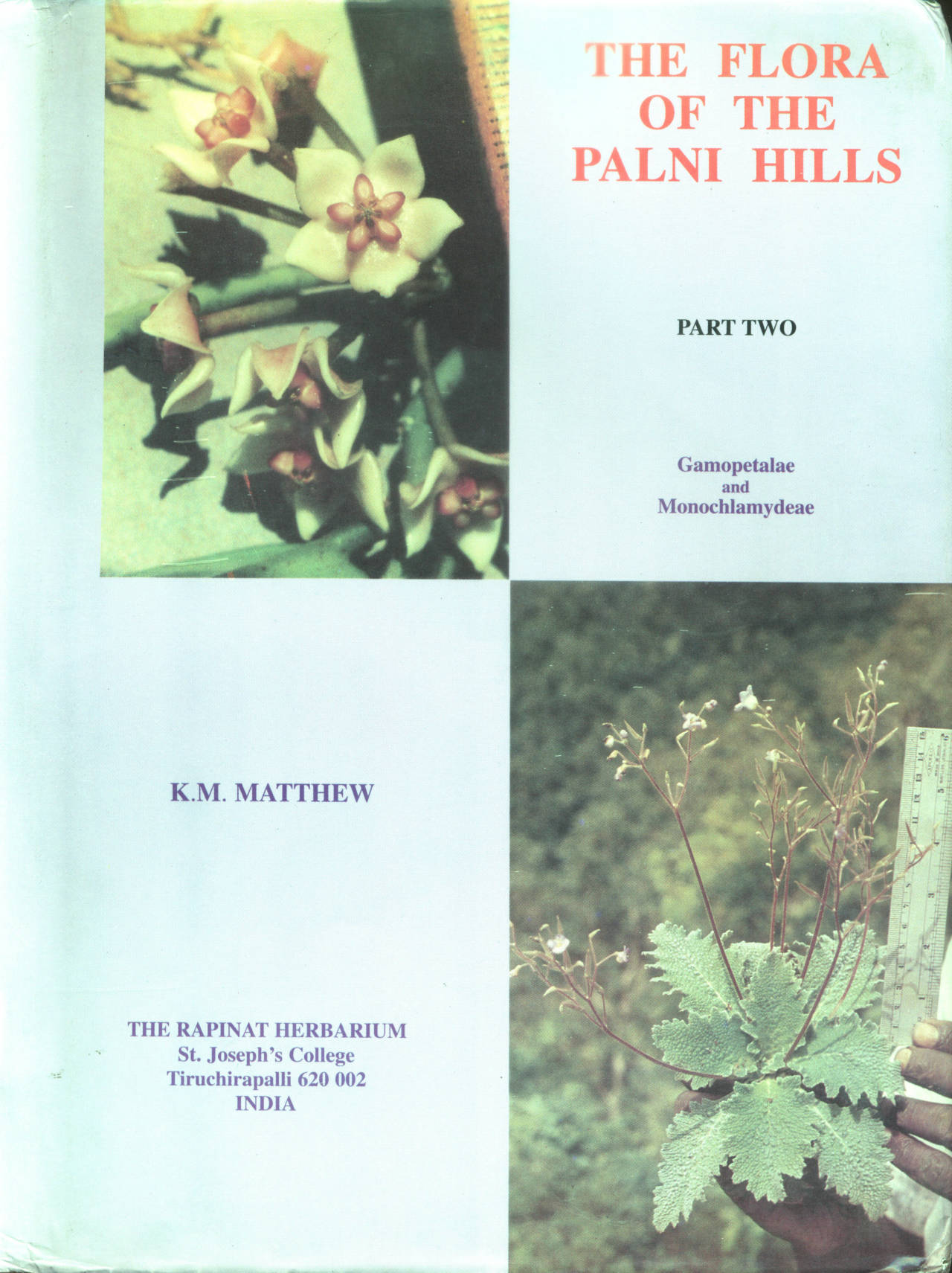 THE FLORA OF THE PALNI HILLS PART TWO